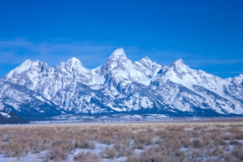 Spring Morning In The Tetons